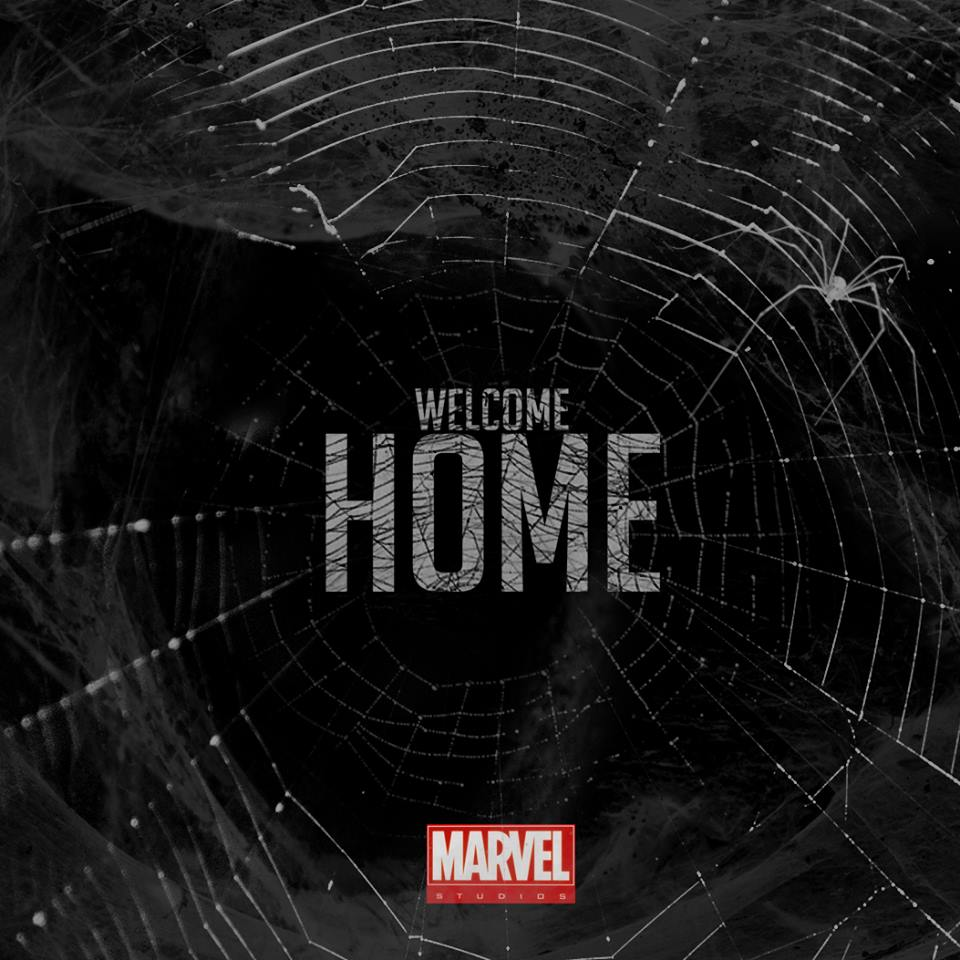 Welcome home Spidey !