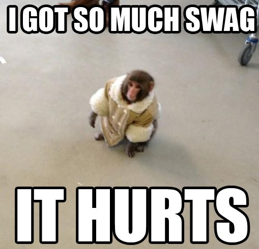 The Ikea Monkey got so much swag