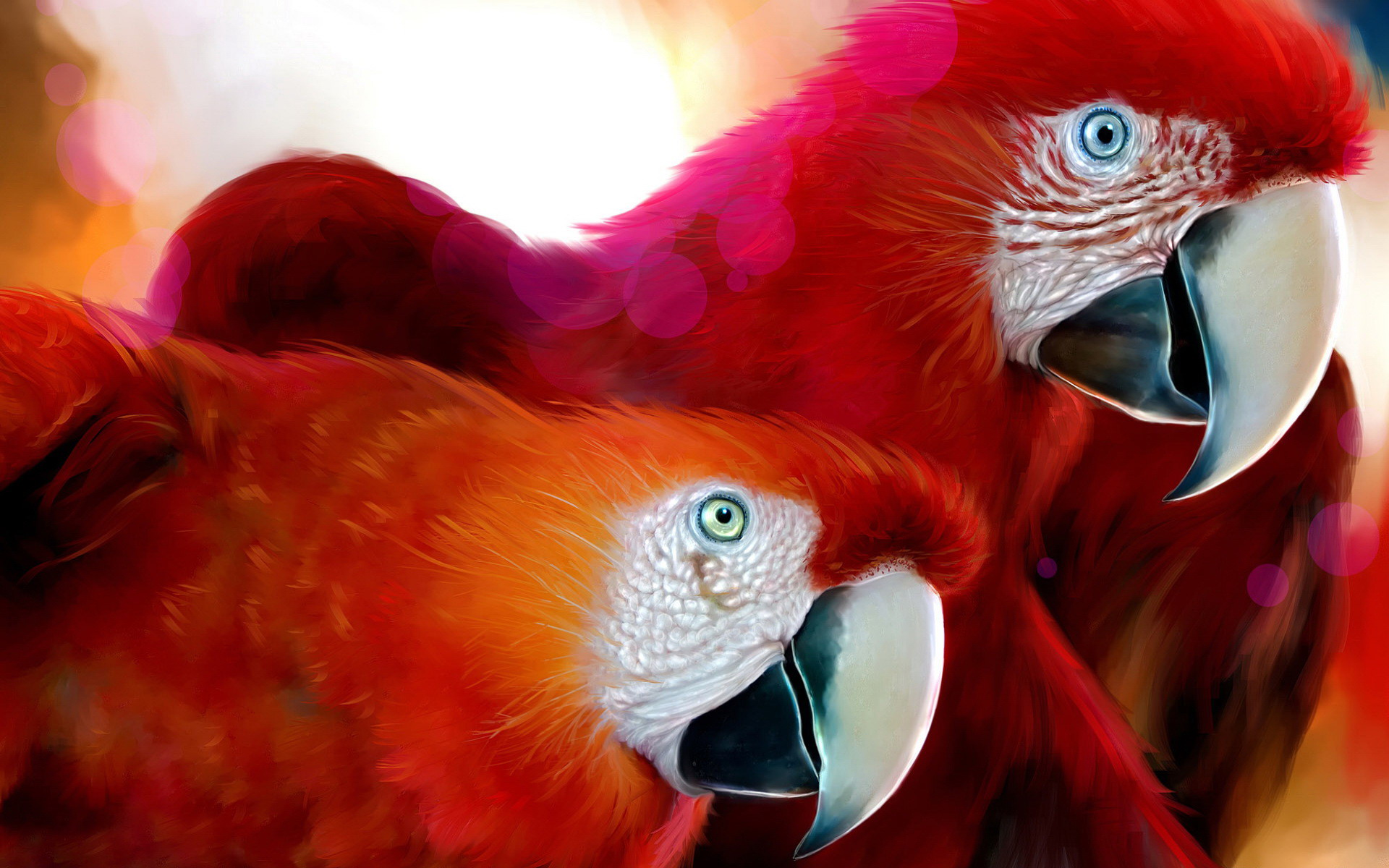 Two Red Parrot [Perroquet]